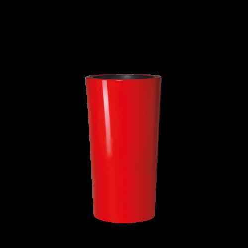COLOR viragulteto, tomato